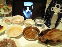 PFL★MIKIのブログ-2012052421050000.jpg