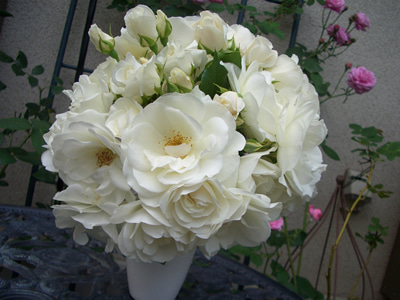 駐妻の光と影(最近はダイエットブログ?) -アイスバーグ花束