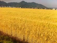 /stat.ameba.jp/user_images/20120527/11/santamonica3da4/27/25/j/t02200164_0800059811995716198.jpg