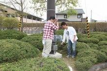 新宿ではたらくサイコロ社長(セミナー企画・アロマサロン経営・ITエンジニアリング)-被災地鯉のぼり@相馬市 公園⑲