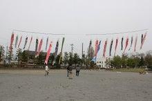 新宿ではたらくサイコロ社長(セミナー企画・アロマサロン経営・ITエンジニアリング)-被災地鯉のぼり@相馬市 公園⑧
