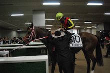 矢作厩舎オフィシャルブログ「よく稼ぎ、よく遊べ!」Powered by Ameba-握手