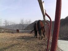 モンゴルで働くジャーナリストのblog-中国モンゴル国境 乗馬旅行