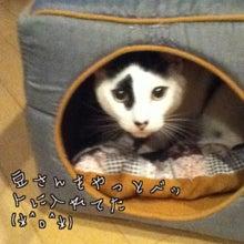 はらぺこ日記-image0015.jpg