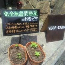 あすお野菜の販売があ…