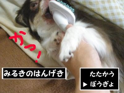 なめらかチワワ-RPG09