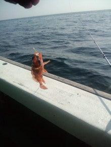 30歳既婚女のグルメ&気まま釣り in 関西