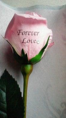 patisserie-flower diary-2012053010580000.jpg