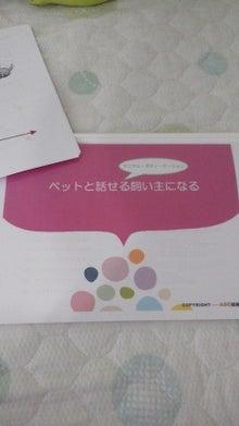 エンジェルカードセラピスト☆いづみ☆のブログ          天使の癒しサロン☆Light Flower☆