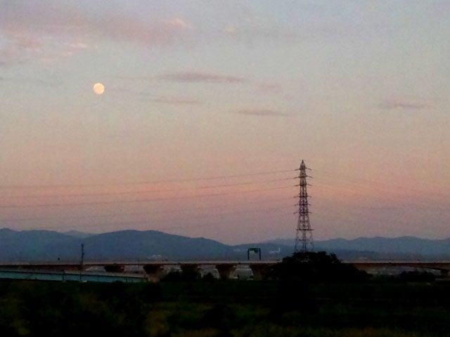 Umebro-early moon