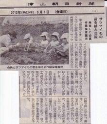 津山衆楽ライオンズクラブメンバーのBlog-サツマイモ苗植-津山朝日新聞