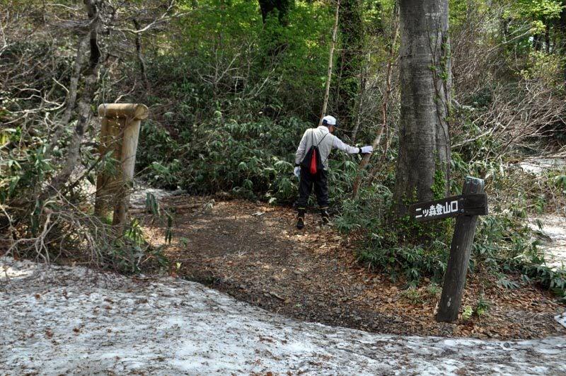 $白神山地ツアーの白神なびスタッフブログ-2012年6月上旬の白神山地・二ツ森1