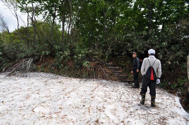 $白神山地ツアーの白神なびスタッフブログ-2012年6月上旬の白神山地・二ツ森7