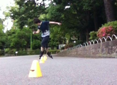 snow crew *海と山の旅*-インラインスケート 駿府公園