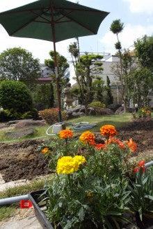 ハイリタイヤ―金城のブログ-園芸①