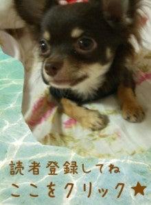 $☆ANEGO☆キラキラ日記-image00.jpg