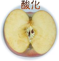 アンチエイジングが自宅で簡単に実践できるブログ-酸化リンゴ