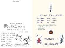 メンコ屋六文堂店主のブログ-マジックランド-1