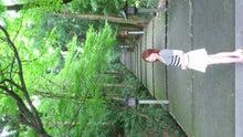 辻井紀子LIFE-DSC_1316.JPG