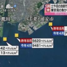 東京湾岸と千葉が20…