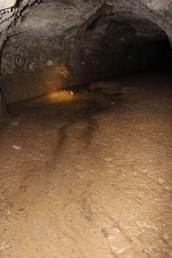 道にあるちょっと古いもの-佐坪の謎穴~~~(通称)幕府1号隧道