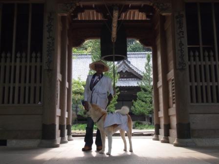 秋田犬カイの日常-三角寺3