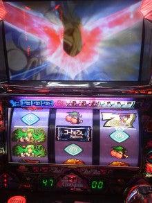 くま吉公の 『 インティキは財布を救う』-DSC_0005.jpg