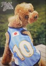 トイプードル☆ナッツだGO!GO!-ポスター3