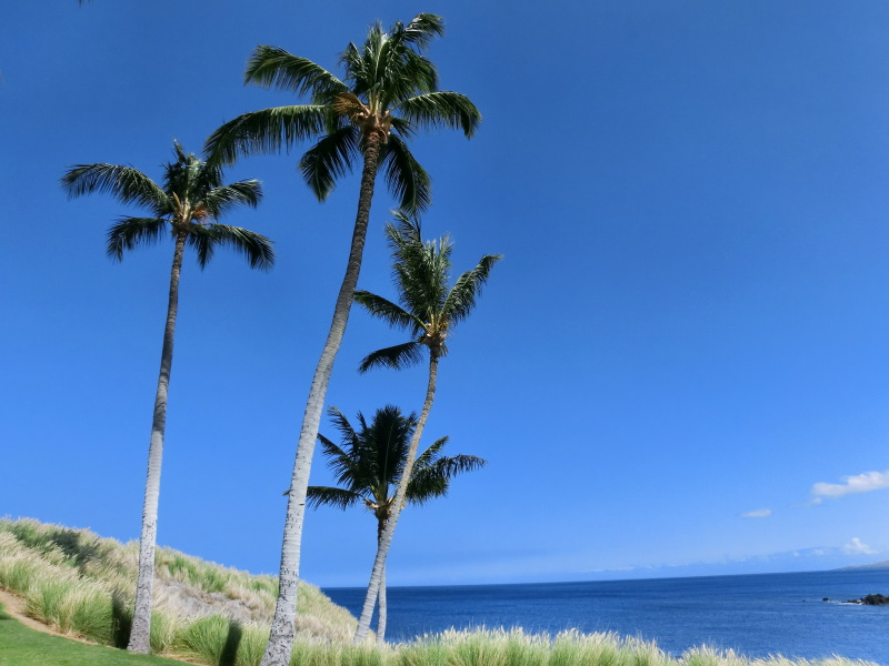 ハワイ島ゴルフ、3回目♪(マウナケアGC) | ハワイ ...
