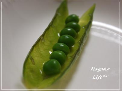 Nagano Life**-グリンピース
