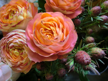 kikiflowerのブログ