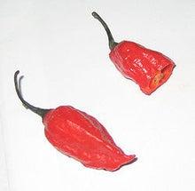 とうがらし料理研究所~赤い壺