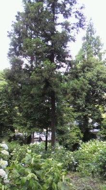 Travail soi-colore岡山の旅とイベントのブログ-2012061311170001.jpg