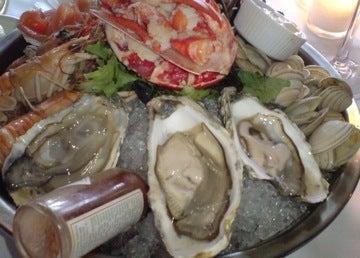 魚貝の風景1