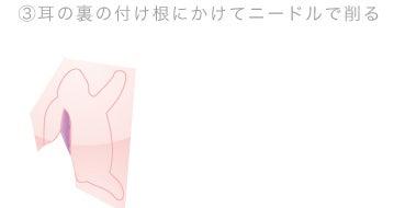 シャーク団のレトロ空間見聞録-週刊カタヌキマスターズ-うさぎ