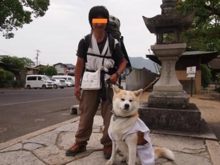 秋田犬カイの日常-本山寺