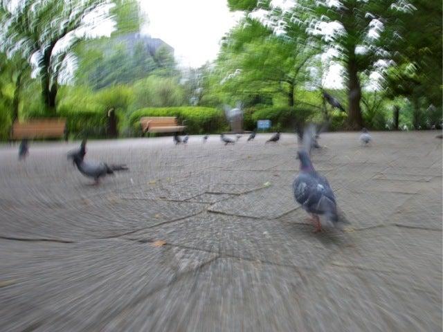 プロ写真家茅原田哲郎のカメラ上達入門編-9KX2F30~1