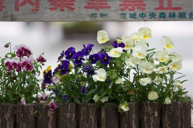 プロ写真家茅原田哲郎のカメラ上達入門編-8TC_146~1