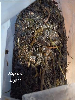 Nagano Life**-酵素・絞りかす