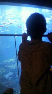 子2人+専業主婦 琵琶湖で楽しむ子育てLIFE!-2012061714330001.jpg