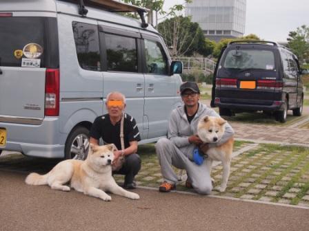 秋田犬カイの日常-ちーちゃん