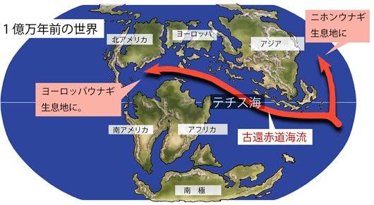 川崎悟司 オフィシャルブログ 古世界の住人 Powered by Ameba-ウナギの分布の広がり
