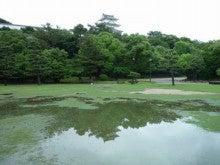 $練気武颯拳&東洋医学でFreeな心と身体♪-明石公園2012.6.22