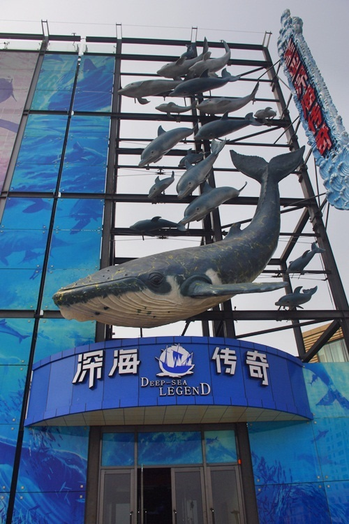 中国大連生活・観光旅行ニュース**-大連 聖亜深海傅