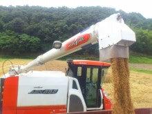 真心ファーマーズ|無農薬・無化学肥料 のお米|兵庫県上郡町-DSC_1558.JPG