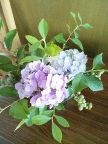 オカメインコのももちゃんと花教室と旅日記-120624_105431.jpg