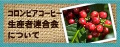 コロンビアコーヒー生産者連合 FNCについて