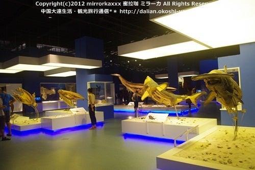 中国大連生活・観光旅行ニュース**-大連 金石灘 生命奥秘博物館