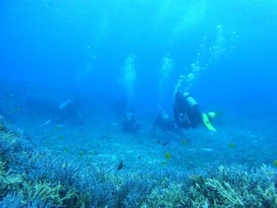 海冒主うみぼうずのブログ:byまのっち-海後ろから