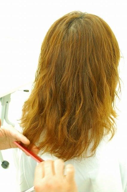 $【ORIGIN-HAIRの365日記】(オリジンヘアー大分県別府市発ブログ)